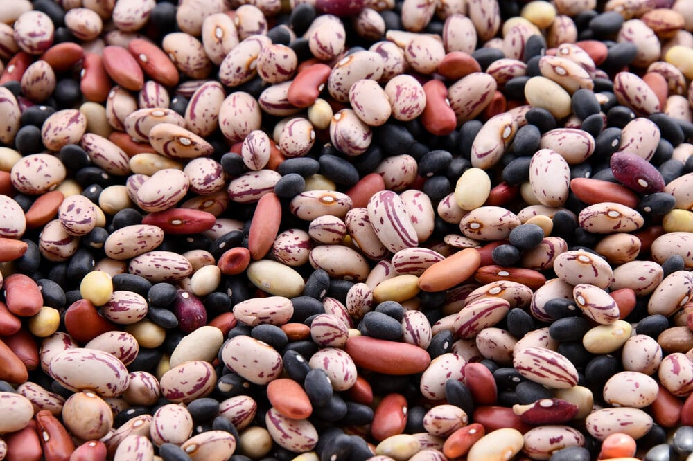 Close up of dried beans, different varieties