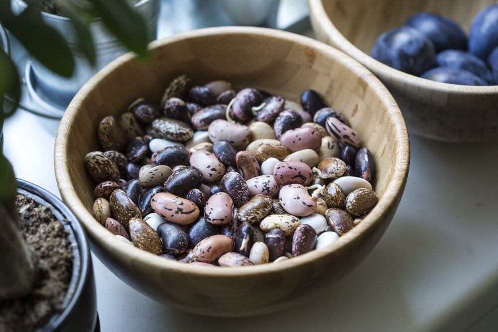 bowl of a variety of uncooked beans
