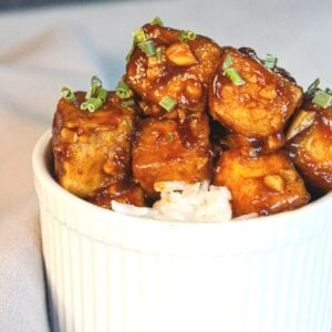 Close up of sticky tofu in a white bowl on rice